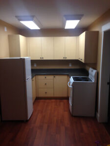 Newer large basement suite in north Nanaimo