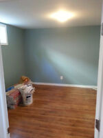 PROFESSIONAL PAINTERS LOW COST FAST & CLEAN WORK WARRANTY