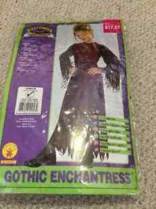 Girl Halloween costume size 6/7