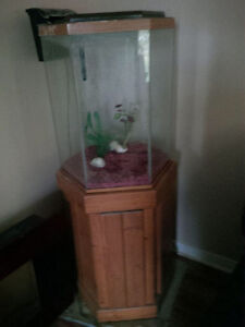 Floor Model fish tank and pump