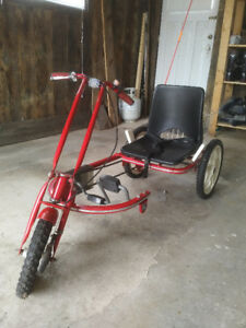 Special Needs trike / tricycle