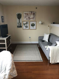 Junior 1 Bedroom Downtown Available January 1