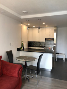 Stunning Fully Renovated 1 Bedroom for Rent Available Sept 1st