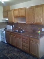 Bachelor Furnished & includes Utilities + Internet Downtown P.A.
