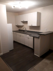Available March 1st - Bachelor Apartment, west end Kingston