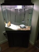 Large fish tank with stand