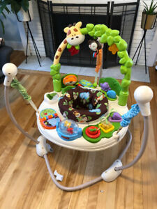 Infant Activity Center (exersaucer)