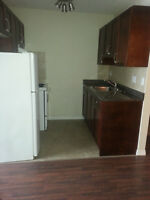 Renovated Bachelor Suite by U of A with INCENTIVES & FREE RENT