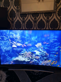 Samsung 4k HDR curved smart tv 48 inches