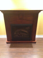 Used Electric Fireplace for sale!