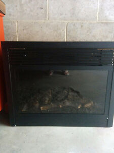 Fire place insert/portable fireplace