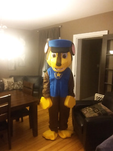 Mascot costumes birthday parties