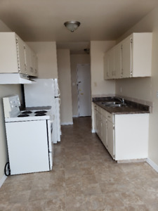 Large two bedroom apartment for rent at 14903-93 Avenue in WEST