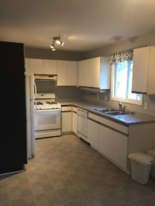 2 Bedroom Beamsville Apartment for Rent