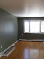 Top floor freshly painted 2 bed $790 all incl with wifi &parking