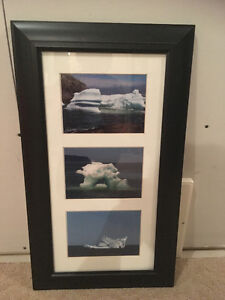 PICTURES OF ICEBERGS FROM NFL
