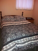 Oct 1 ONE Bedroom Furnished Apartment FOR RENT Clarenville
