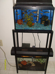 AQUARIUMS - DUAL 5 GALLON PACKAGE WITH METAL STAND