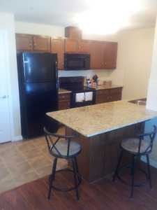 Awesome 2 bed 2 bath Condo, 2 TITLED Parking stalls