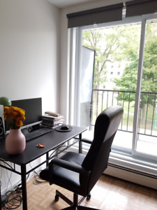 $625 / 1br - newly renovated apartment near Metro Du College