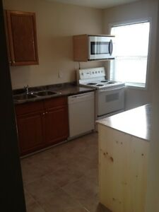 Large One Bedroom Loft Downtown