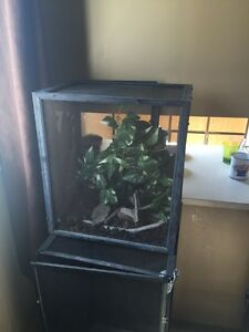 2 small reptile cages