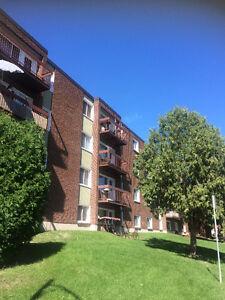 3 1/2 , 1 chambre, Gatineau, Hull rue BÉDARD Gatineau Ottawa / Gatineau Area image 7