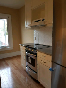 Newly renovated one bedroom apartment available November