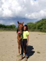 Western and English Horseback Riding Lessons