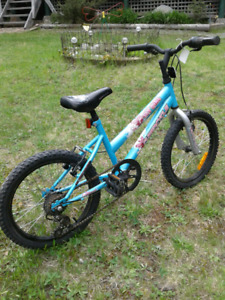Flygirl Supercycle 18 inch