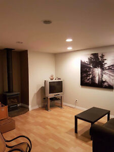 1 bedroom basement suite in heritage lakes