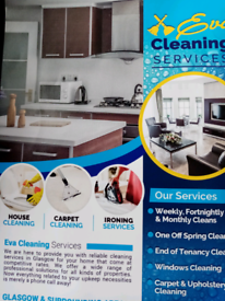 Dimestic Cleaning