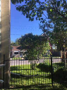 2bdrm + den.  June 1.  $950.  Bright/Clean/Gardens/Shed/Downtown