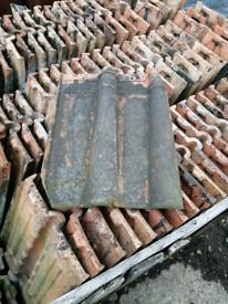 Bridgewater double roman clay roof tile.