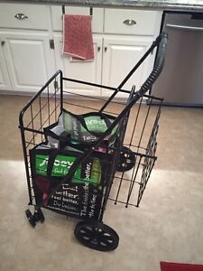 Folding shopping or laundry cart with double basket