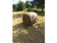 Very good Quality Hay for sale - suitable for all Livestock including Horses