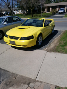 2003 Ford Mustang Convertable