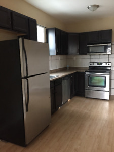 Newly Renovated 2 Bedroom + Den Duplex