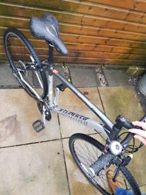 Mens Specialized Hybrid bike