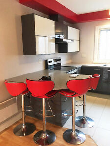 Completely Renovated Modern 4 1/2 in Ville St-Laurent