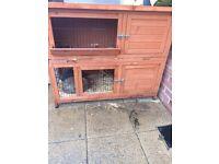 2 rabbits 2 hutches 1 run