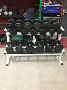dumbbells fix powerblocks bowflex