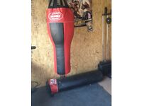 Punch bags x2 plus wall bracket