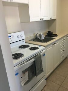 Looking for a Roomate ASAP! Kingston Kingston Area image 2