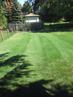 Booking Bi-weekly Lawn Maintenance, Call Today