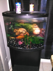 45 gallon curved fish tank