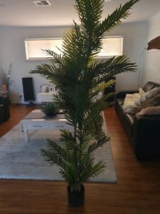 6ft tall artificial palm tree high quality