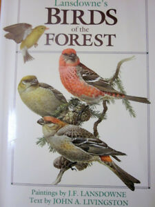Birds of the Forest//Book of North American Birds