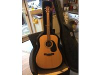 Accoustic Guitar with hard case