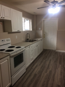1 Bedroom Basement Suite for Rent available March 1 - Salmon Arm